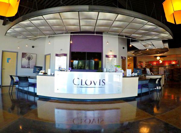 Clovis Storage & Executive Office Suites 2491 Alluvial Ave Clovis, CA - Photo 2
