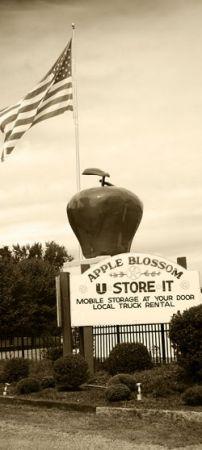 Apple Blossom U Store It 8112 John Mosby Hwy Boyce, VA - Photo 1