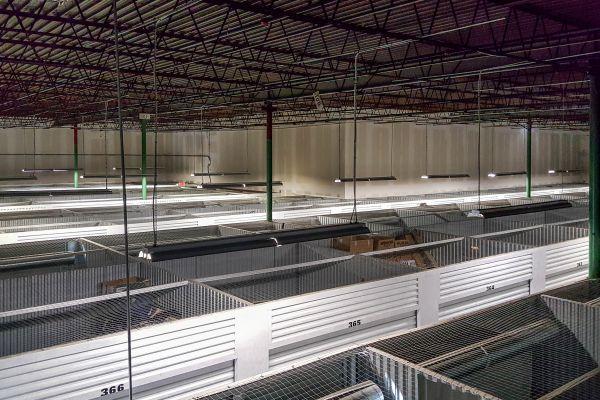 US Storage Centers - Denton - 1815 Shady Oaks Drive 1815 Shady Oaks Drive Denton, TX - Photo 8