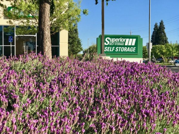 Superior Self Storage - Rancho Cordova 3379 Sunrise Boulevard Rancho Cordova, CA - Photo 0