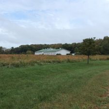 Photo of Nip and Tuck Farm