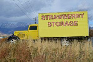 Photo Of Strawberry Storage