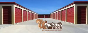 Photo of Squirrel's Storage
